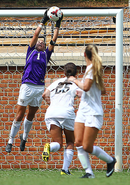 WINSTON-SALEM, NORTH CAROLINA - September 01, 2013:<br />  Aubrey Bledsoe (1) of Wake Forest University makes a save during a match at the Wake Forest Invitational tournament at Wake Forest University on September 01. The match was abandoned early in the second half due to severe weather with Wake leading 1-0.