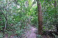 Arvores da Floresta Nacional de Palmares. Altos. Piaui. 2014. Foto de Candido Neto.