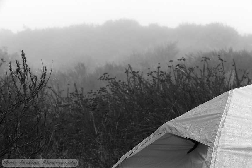 Fog shrouds the landscape on a morning at Crystal Cove State Park's Lower Moro campground.  My REI Quarterdome T2's tent's rainfly is covered in water droplets.
