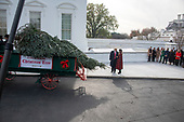 United States President Donald J. Trump and First lady Melania Trump accept the White House Christmas tree on the North Driveway of the White House in Washington, DC on Monday, November 19, 2018. The 2018 White House Christmas Tree will arrive as in previous years by horse and carriage on the North Portico. The tree will be displayed in the Blue Room of the White House. <br /> Credit: Ron Sachs / CNP<br /> (RESTRICTION: NO New York or New Jersey Newspapers or newspapers within a 75 mile radius of New York City)