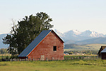 red hay barn, snow capped mountains, spanish peak mountains, gallatin national forest, outbuildings.