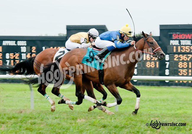 Making Waves winning at Delaware Park on 7/25/13