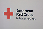 poster -  at the 9th Annual Rock Show for Charity to benefit the American Red Cross of Greater New York on October 9, 2010 at the American Red Cross Headquarters, New York City, New York. (Photos by Sue Coflin/Max Photos)