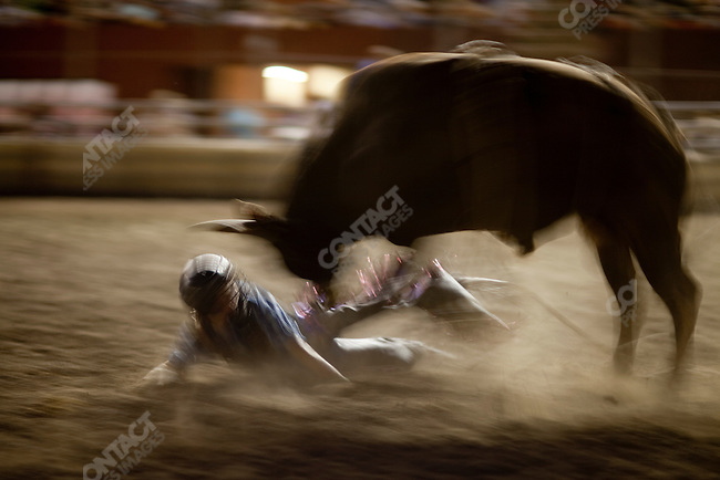 Scenes from the bull riding at the Montana Fair in Billings, Montana. Bilings, Montana, USA, August 14, 2009