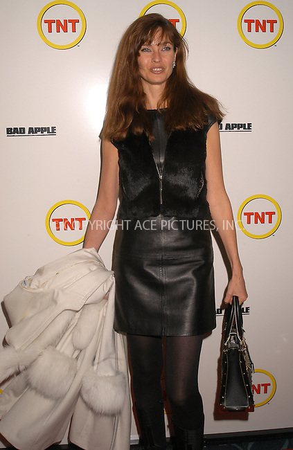 WWW.ACEPIXS.COM . . . . .  ....NEW YORK, FEBRUARY 13, 2004....Carol Alt at the premiere of 'Bad Apple' in New York.....Please byline: AJ Sokalner - ACE PICTURES..... *** ***..Ace Pictures, Inc:  ..Alecsey Boldeskul (646) 267-6913 ..Philip Vaughan (646) 769-0430..e-mail: info@acepixs.com..web: http://www.acepixs.com