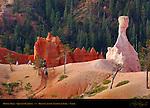 Queen's Garden Horse Trek, Bryce Canyon National Park, Utah