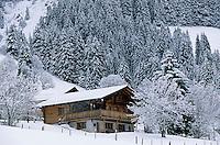 Europe/Suisse/Saanenland/Env Gstaad/Turbach: Chalet dans la neige