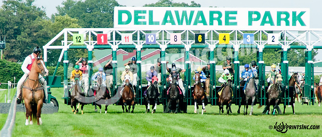 Cactus Son winning at Delaware Park on 8/19/13