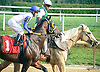 Fantasmagorico at Delaware Park on 9/1/15