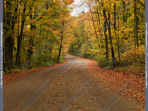 Winding unpaved road through beautiful fall nature scenery. Algonquin Provincial Park, Ontario, Canada.