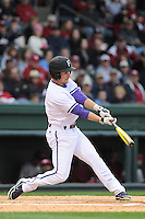 Outfielder Will Muzika (2) of the Furman Paladins bats in a game against the South Carolina Gamecocks on Wednesday, April 3, 2013, at Fluor Field at the West End in Greenville, South Carolina. (Tom Priddy/Four Seam Images)