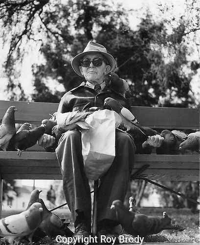 Blind man on park bench holding packets of food being shared by the pigeons.