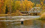 Autumn fly fishing scene across the Coeur d'Alene River.