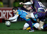 Dragons v Wasps 20130117
