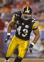 Troy Polamalu (43).