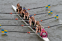 Crew: 308 Royal Free & Univ Coll Medical School Boat Club B<br /> <br /> Women's Head of the River (WeHoRR) 2017<br /> <br /> To purchase this photo, or to see pricing information for Prints and Downloads, click the blue 'Add to Cart' button at the top-right of the page.