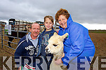 Eddy Canty, Michael Canty from Lixnaw with Nora Casey from Aghinagh o Cathasaigh Alpacas at the Abbeydorney Ploughing Match on Sunday