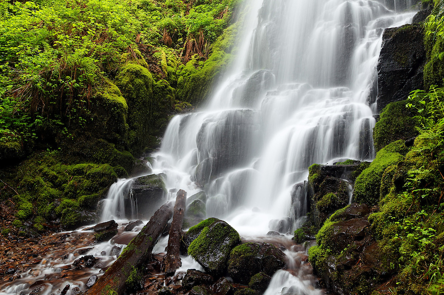 Wahkeena Creek cascading over Fairy Falls, Columbia River Gorge National Scenic Area, Oregon, USA