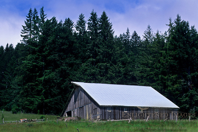 Barn on Fickle Hill, above Eureka / Arcata, Humboldt County, CALIFORNIA