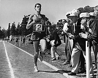Runner Jim Ryan breaks the world record in the mile run at University of California in Berkeley, Ca with a time of 3.51.3. (July 17,1966 photo/Ron Riesterer)