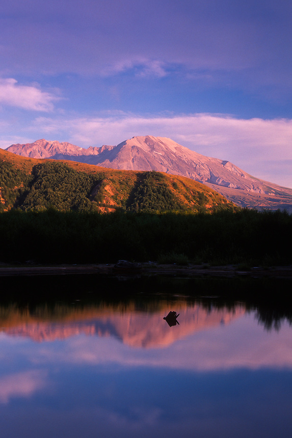 Coldwater Lake and Mt. St. Helens, Mt. St. Helens National Volcanic Monument, Washington, US