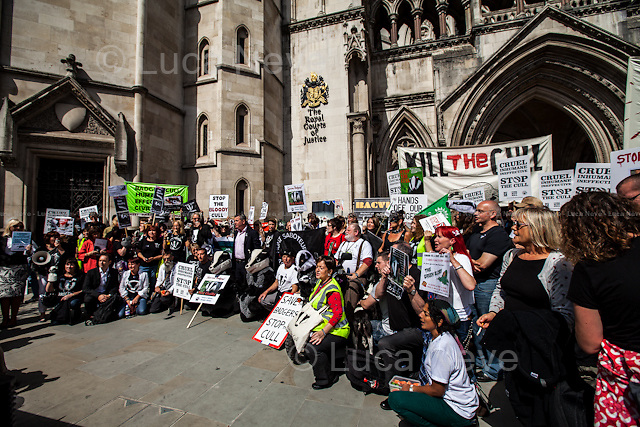London, 21/08/2014. Today, the &quot;Badger Army&quot;, supported by &quot;Care for The Wild&quot; and &quot;Badger Trust&quot;, held a demonstration outside the Royal Courts of Justice to highlight the ongoing Judicial Review Hearing between the &quot;Badger Trust&quot; and DEFRA (Department for Environment, Food &amp; Rural Affairs). From the &quot;Badger Trust&quot; website: &lt;&lt; [&hellip;] The Judicial Review will argue that DEFRA and Natural England have failed to put in place any Independent Expert Panel for the planned culling of badgers in Gloucestershire and Somerset in 2014. The Trust contends such a Panel is needed to oversee the design of data collection, its analysis and interpretation. Without this, there can be no proper assessment of the safety, effectiveness and humaneness of the culling operation, something that would be needed before any lawful decision to continue with further culls around the country. [&hellip;]&gt;&gt;.<br />
