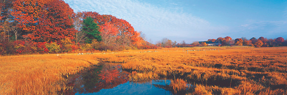 A fall day at Rye,New Hampshire,  with  an old farm beside the salt marsh. Photograph by Peter E. Randall.