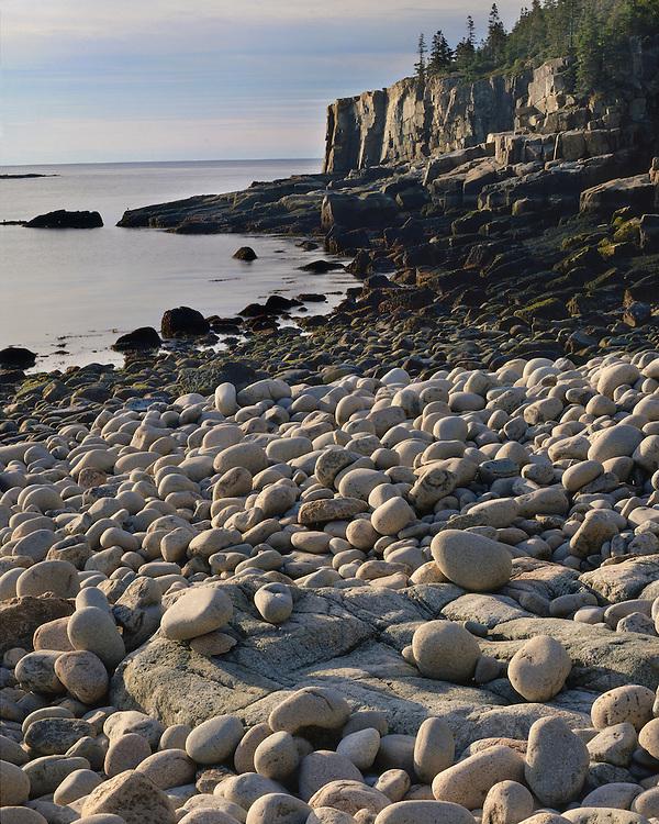 Rock patterns at low tide below Otter Cliffs; Acadia National Park, ME