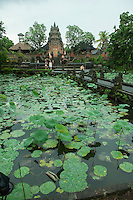 The fabulous Lotus Pond temple in Ubud, Bali