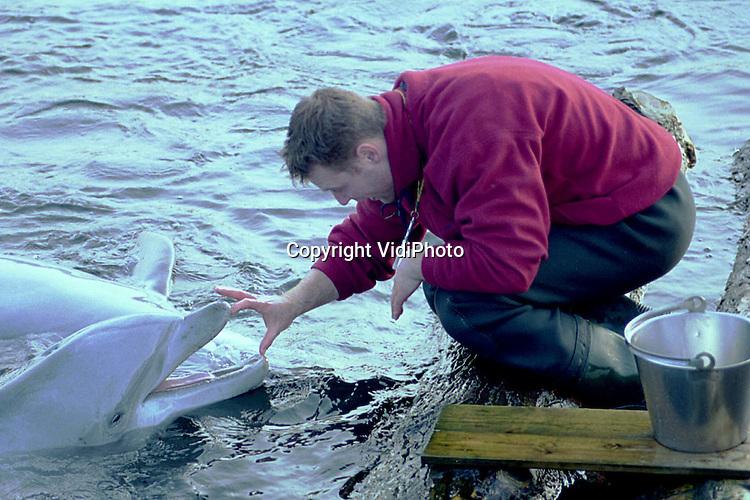 Foto: VidiPhoto..HARDERWIJK - De dolfijnen van het Dolfinarium in Harderwijk vertonen hun allernieuwste kunsten. Tijdens de winterstop wordt er intensief met de dieren getraind. Tot 24 februari is het park voor het publiek gesloten. Het Dolfinarium heeft voor vorig jaar voor de derde achtereenvolgende keer meer dan 1 miljoen bezoekers getrokken. Het topseizoen 1999 (1.040.000 bezoekers) werd vorig jaar zelfs met 40.000  bezoekers overschreden tot een totaal van 1.080.000 bezoekers.