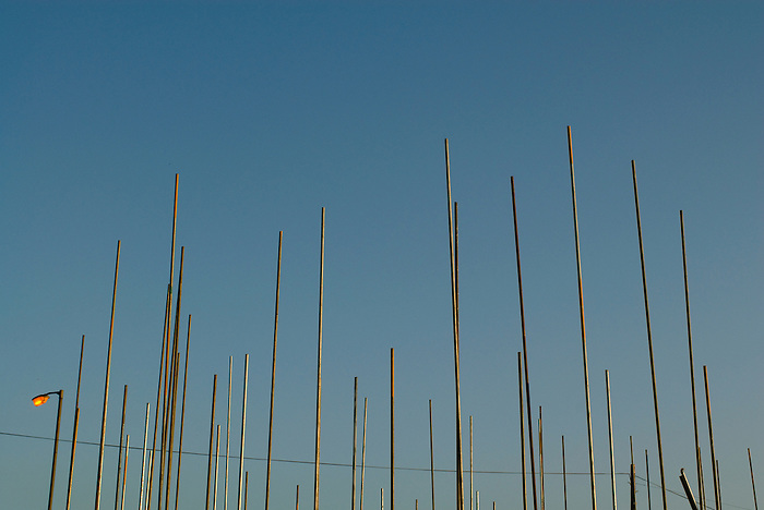 Scaffold poles on a construction site.