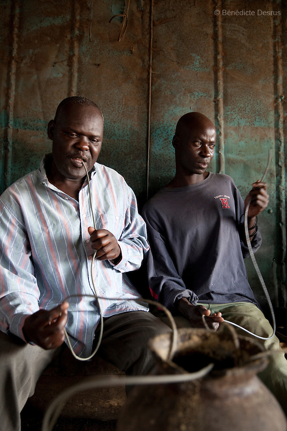 Two Kenyans men drink Busaa, a traditional fermented beer, from a common pot using long straws - in a crowded busaa club at midday in a Nairobi slum on March 27, 2013. Busaa is made by crudely fermenting maize, millet, sorghum or molasses. At Kshs 35 per liter it is much cheaper than a Kshs120 half-liter bottle of commercial beer. The local brew was legalised in 2010 and since then busaa clubs have become increasingly popular. Drinking is on the rise in Kenya, especially among young people. Photo: Benedicte Desrus