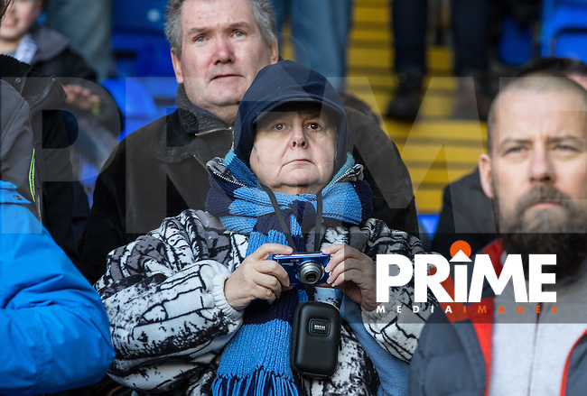 Wycombe Wanderers supporters enjoy the day during the FA Cup fourth round match between Tottenham Hotspur and Wycombe Wanderers at White Hart Lane, London, England on 28 January 2017. Photo by PRiME Media Images / Andy Rowland.