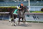 HALLANDALE BEACH, FL - JANUARY 25: Phat Man, #5, ridden by jockey Irad Ortiz, Jr., wins the Fred W. Hooper Stakes on January 25, 2020 at Gulfstream Park in Hallandale Beach, Florida. Kaz Ishida/Eclipse Sportswire/CSM
