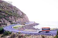 Image Ref: CA275<br /> Location: Sheoak Hike, Great Ocean Road<br /> Date of Shot: 26.04.18