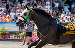 OCEANPORT, NJ - JULY 29: A stray horse crosses the finish line on Haskell Invitational Day at Monmouth Park Race Course on July 29, 2018 in Oceanport, New Jersey. (Photo by Scott Serio/Eclipse Sportswire/Getty Images)