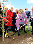 Mairead McGuinness MEP at the launch of National Tree week in Ardee. Photo: Colin Bell/pressphotos.ie