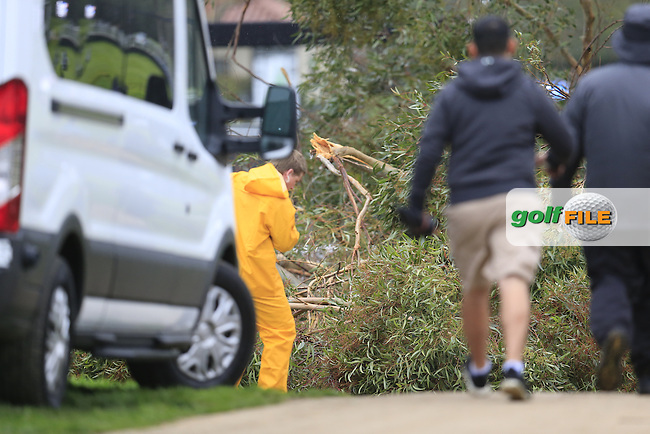 Tree falls down at the 15th tee during Friday's Round 2 of the 2017 Genesis Open held at The Riviera Country Club, Los Angeles, California, USA. 17th February 2017.<br /> Picture: Eoin Clarke | Golffile<br /> Picture: Eoin Clarke | Golffile<br /> <br /> <br /> All photos usage must carry mandatory copyright credit (&copy; Golffile | Eoin Clarke)