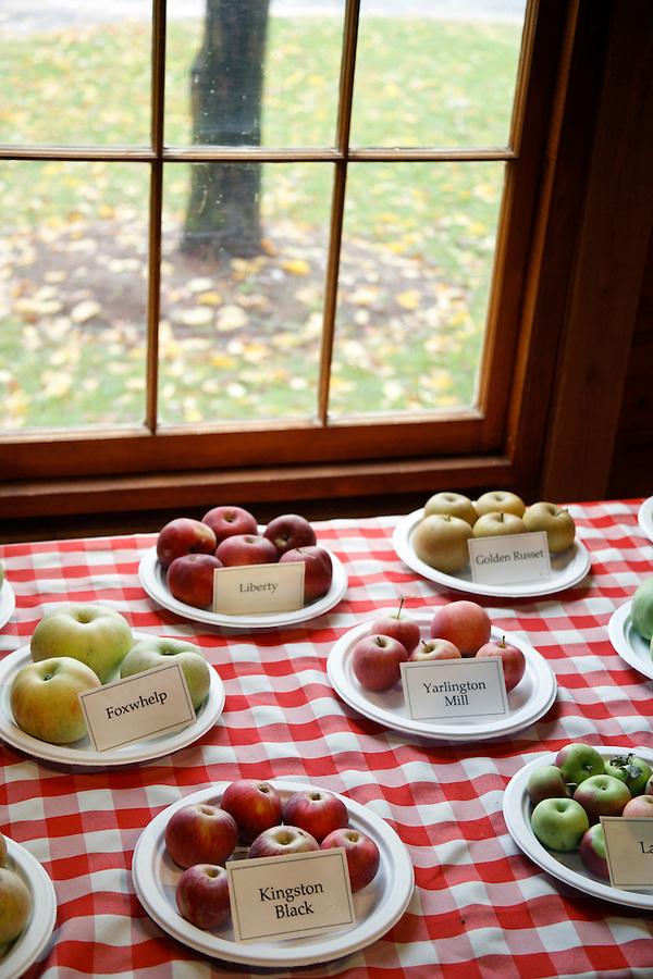 Apples displayed on table top below window