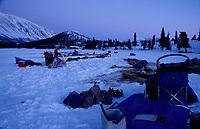 Teams Rest at Dawn on Puntilla Lake Rainy Pass