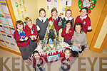..HELPERS: The helpers from St Brendan's  National School,Fenit who helped Catherine Spanger (Fenit Craft Circle) to put the Knitted Craft Christmas Crib together  at their school on Tuesday, L-r: Isabel Moriarty, Rón O'Neill, Conor Lenihan, Sarah Fitzgerald, Ellen Lenihan, Emma Fitzgerald, Alison Moriarty,Iona O'Neill,Lily Mari Williamson and  Catherine Spangler(Fenit Craft Circle)...............