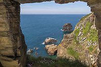 Royaume-Uni, îles Anglo-Normandes, île de Sark (Sercq) : Window in the rock : vue sur le port du Moulin et l'îlot Pêgane// United Kingdom, Channel Islands, Sark Island (Sercq)