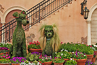 Topiary featuring Lady and the Tramp characters, Disney World, Florida