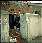 August 2000. Jakarta, Indonesia. Birding is a way of life to the Indonesians. Here a local cleans his birdcages. In Indonesia having a bird is like americans having a dog.