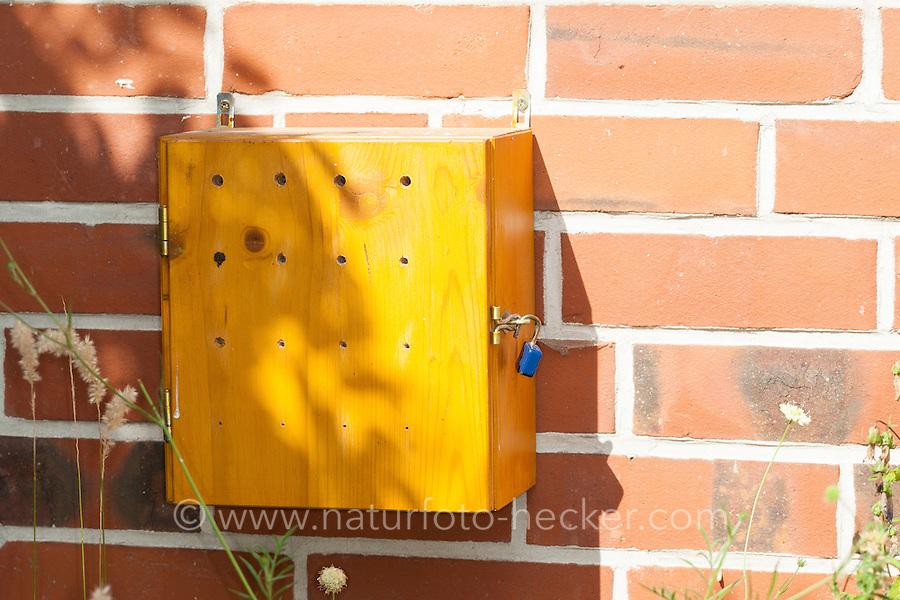 Insekten-Hotel, Insektenhotel, Nisthilfe für Wildbienen mit Beobachtungsmöglichkeit, bietet Nistmöglichkeiten für Wildbienen, Mauerbienen und solitäre Wespen