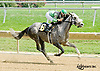 Flashy Eyed Pearl winning at Delaware Park on 8/20/14