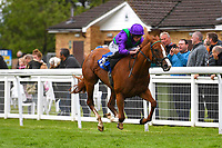 Winner of The Wilton Homes Novice StakesTapisserie ridden by Ryan Moore and trained by William Haggas during Evening Racing at Salisbury Racecourse on 11th June 2019