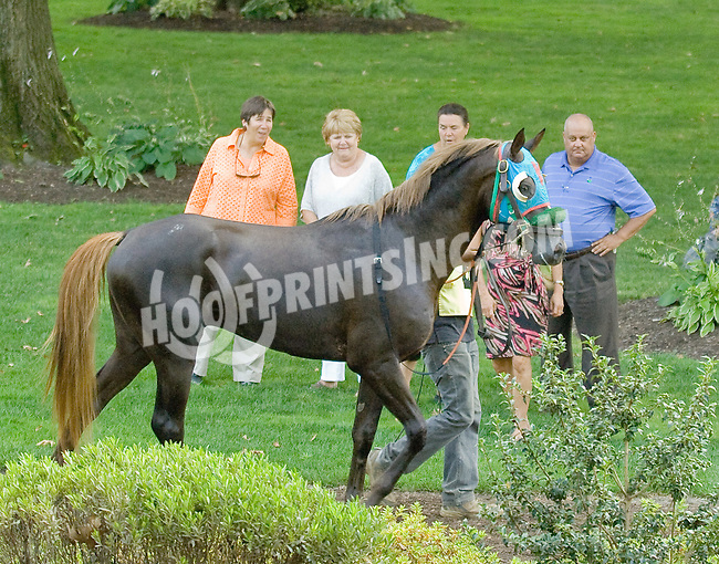 Secret Treasour before The Alec Courtelis Juvenile Arabian Stakes at Delaware Park on 7/9/12
