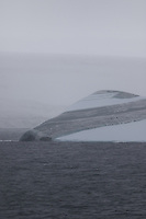 Striped iceberg grounded  in Maxwell bay, Fildes, King george islands, South Shetland, Southern Ocean, Antarctica