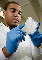CVM Class of 2017 student, Andres Gibbs, works with class of 2017, Caitlin Riggs, in the animal health center pharmacodynamic laboratory. Gibbs was working on a summer research experience study with Dr. Todd Archer on the effects of pentoxifylline on il-2 and ifn-ÿ gene expression in canine whole blood.